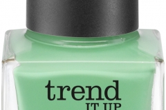 4010355279354_trend_it_up_Nail_polish_020