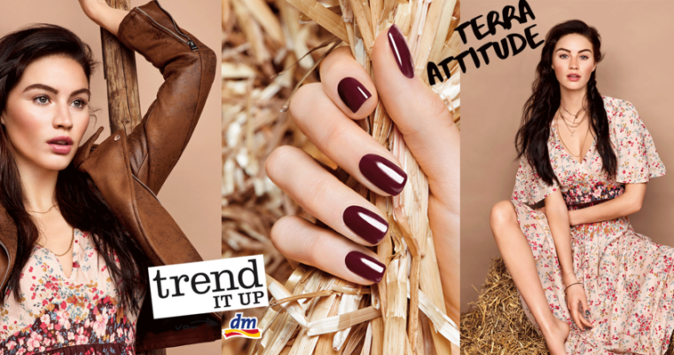 PREVIEW: trend IT UP Terra Attitude